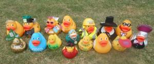 Big Ducks 2015